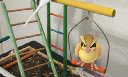 Strange places to hunt Pokémon